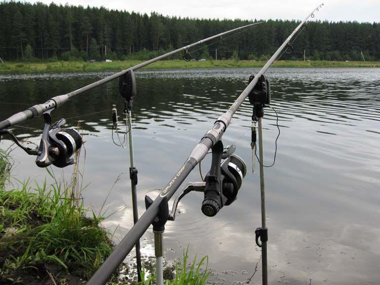 Определяем тест удилища для ловли карпа / Блог о рыбалке / CarpBoat
