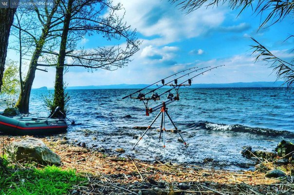 Какую погоду любит карп? / Блог о рыбалке / CarpBoat