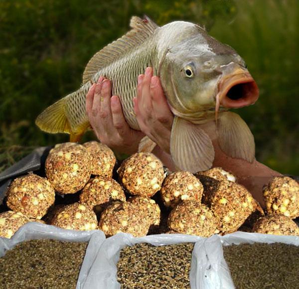 рыбалка корм карася да леща